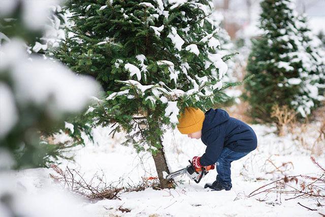 Quoi faire dans Chaudière-Appalaches pendant les vacances de Noël