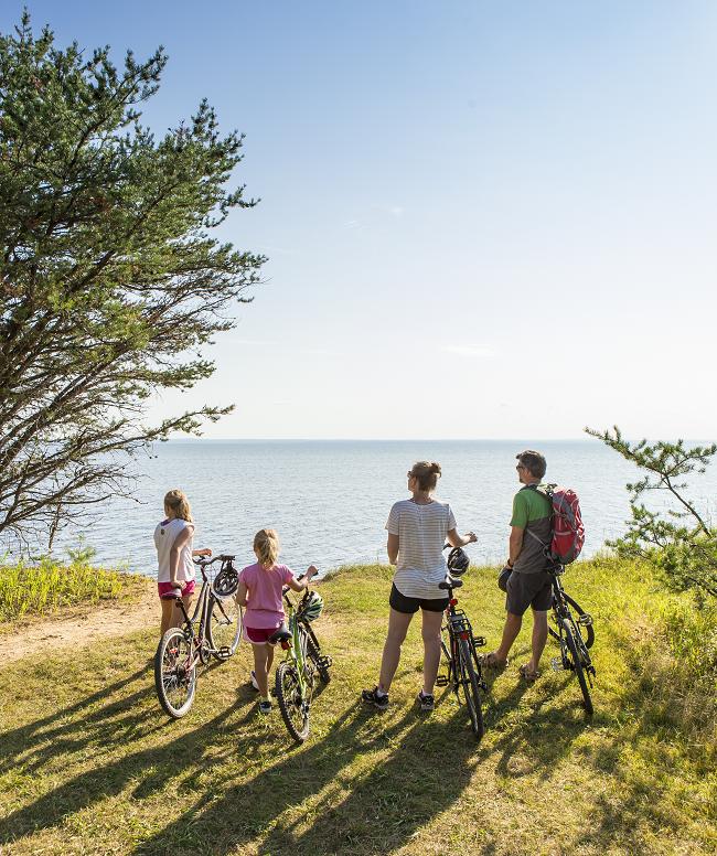 Vélo: 6 endroits à essayer dans les parcs nationaux du Québec