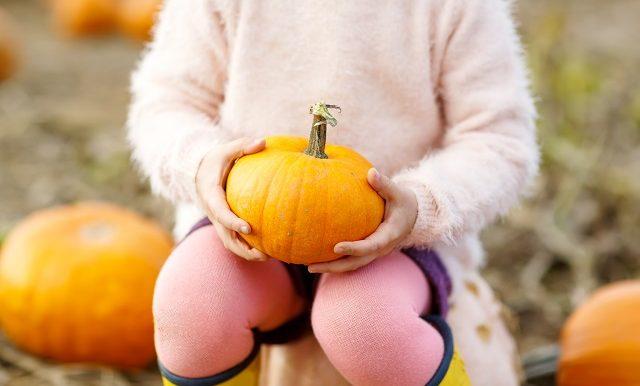 une petite fille habillée en rose tient une citrouille sur ses genoux