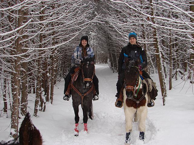equitation-ecurie-chevaux