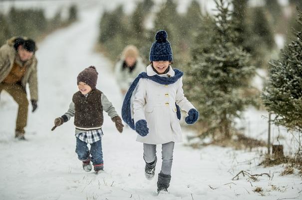 rel che 3 activit s familiales moins de 50 au saguenay lac saint jean vifa. Black Bedroom Furniture Sets. Home Design Ideas