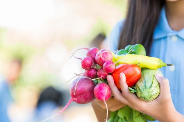Potager en famille: 6 étapes pour commencer à jardiner