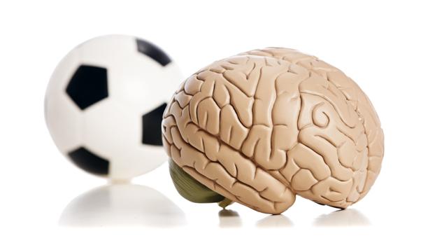 L'activité physique rend le cerveau apte à l'apprentissage