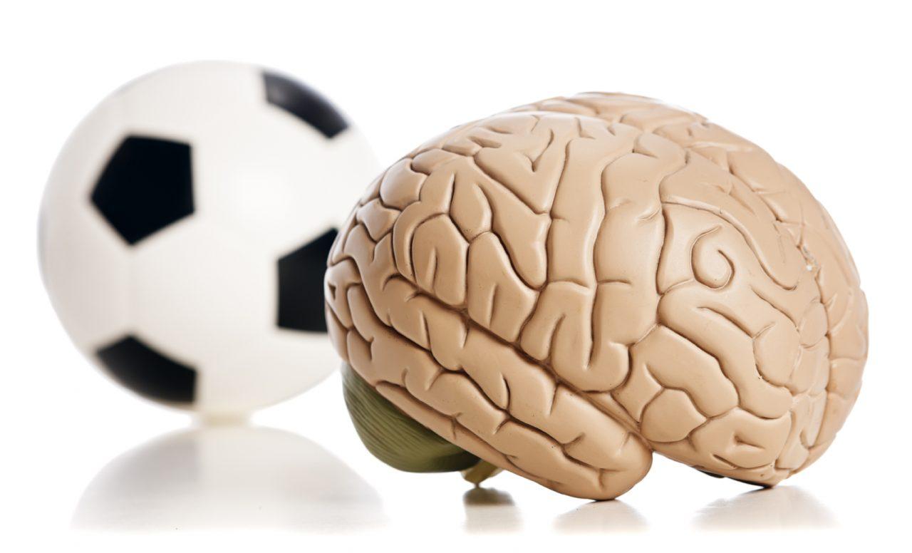 Les enfants actifs ont un cerveau musclé