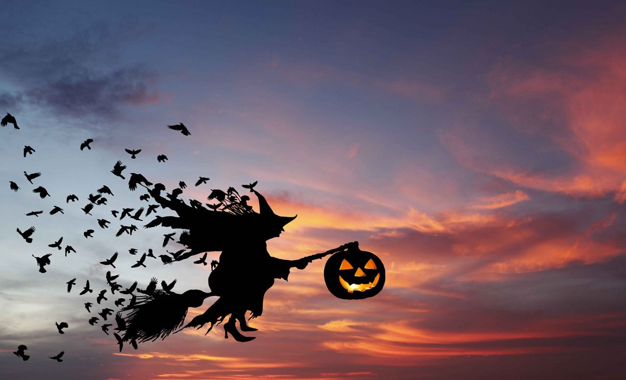 Halloween : une sortie à l'Aquarium du Québec