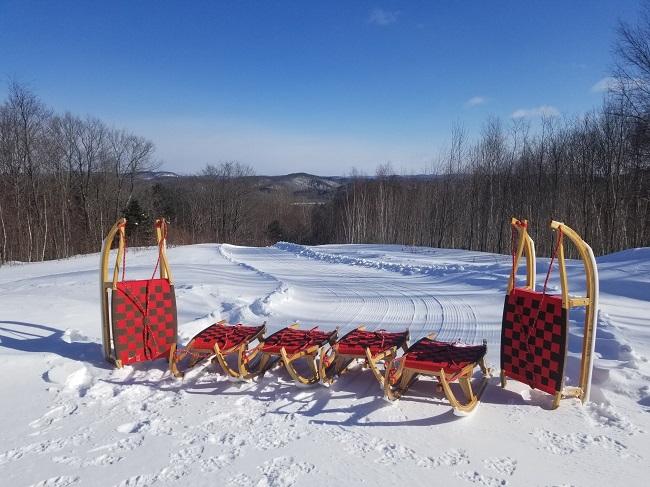 Luge alpine traîneaux sur la neige
