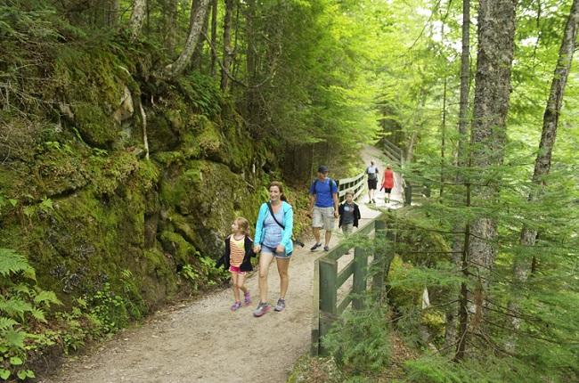 une famille qui marche dans un sentier en forêt