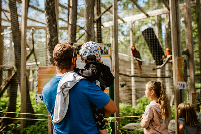 se faire de nouveaux amis au miller zoo frampton en beauce.