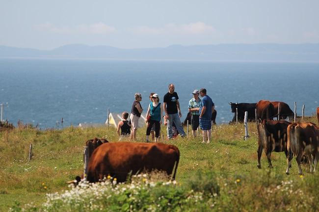 Visites à la ferme Iles de la Madeleine