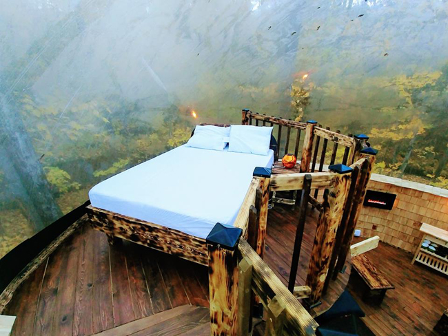 camping lit dans une bulle en nature