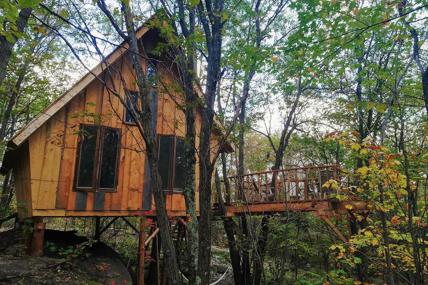 cabane dans les arbres les pieds sur terre