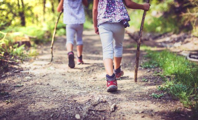 enfants qui marchent en forêt