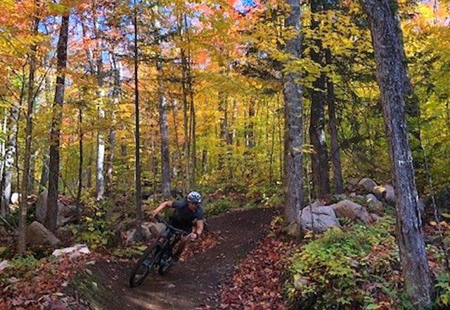 Vélo de montagne dans les Laurentides