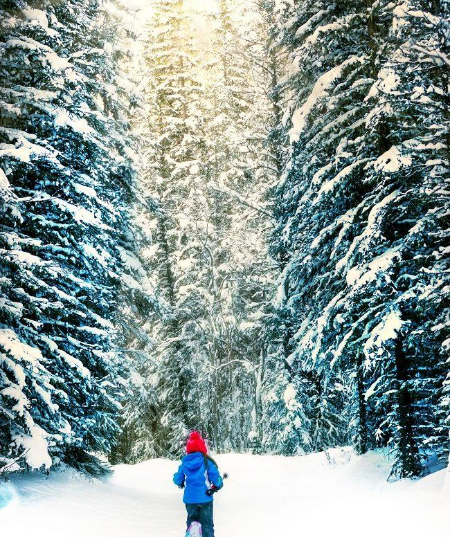Raquettes à neige: tout ce qu'il faut savoir pour pratiquer en famille