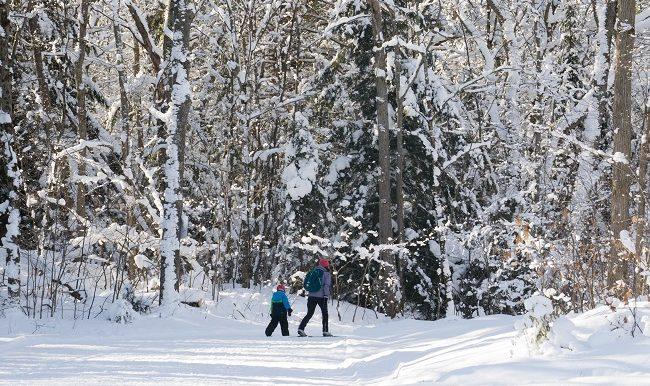 Ski de fond: petit guide pour pratiquer ce sport en famille