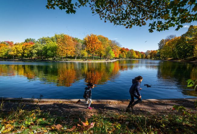 Automne 2021: 8 activités pour profiter de Montréal