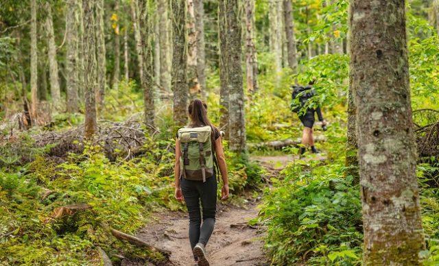 Sans trace en randonnee pédestre : comment profiter de la nature sans l'abîmer