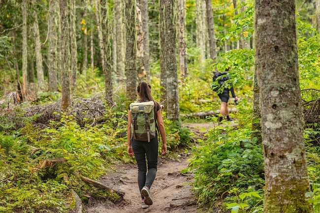 Sans trace en randonnée pédestre : comment profiter de la nature sans l'abîmer?